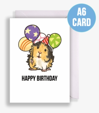 Tricolour Abyssinian Guinea Pig With Balloons Birthday Happy Birthday Guinea Pig Card Transparent Png 801x801 Free Download On Nicepng