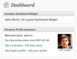 screencap of my example widget