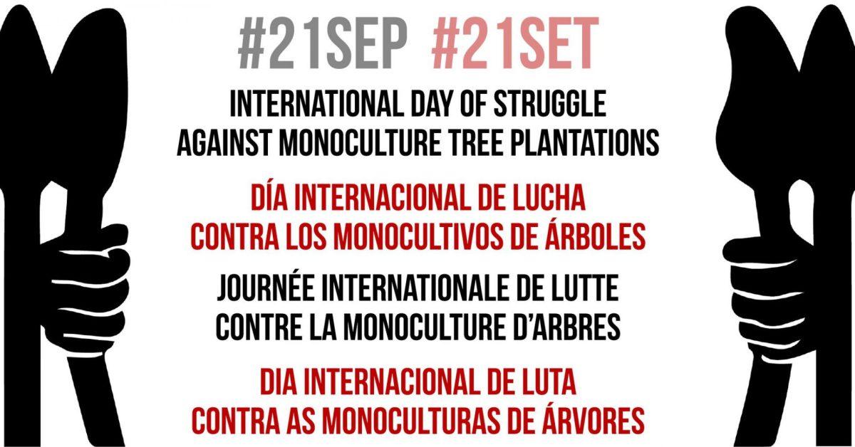 Día internacional de lucha contra los monocultivos de árboles