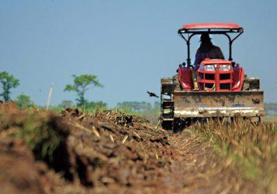 Normas UNE para Insumos aptos para la producción ecológica