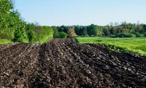 La microbiologie des sols fait partie intégrante d'une révolution des connaissances.