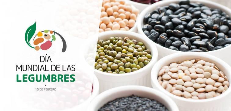 """10 de febrero 2020   """" Día Mundial de las legumbres,  Proteínas vegetales para un futuro sostenible """""""