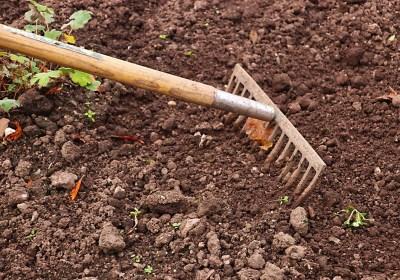 Desarrollan un nuevo método para medir la fertilidad del suelo