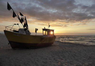 Los cambios en la circulación oceánica pueden haber causado un cambio en los ecosistemas del Atlántico que no se han visto en los últimos 10.000 años
