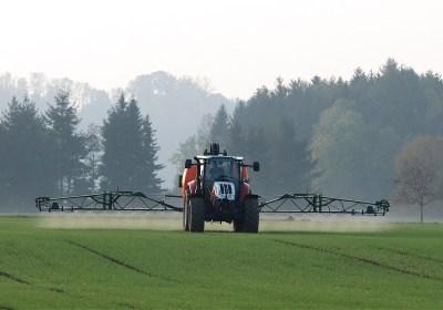 Se encuentran múltiples pesticidas en muestras de cabello de madres y en sus bebés