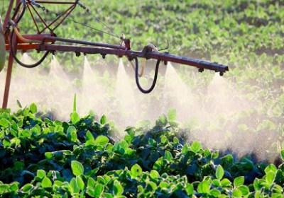 La Unión Europea prescinde, por primera vez, de un pesticida por alterar el sistema hormonal