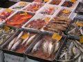 Más de 130 científicos alzan la voz para que la UE deje de financiar la sobrepesca