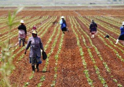 Mujeres en la primera línea por el derecho a la tierra en Marruecos