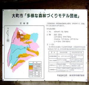 arayama091