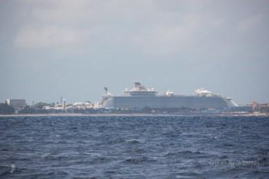 paquebot à Nassau