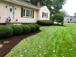 Simlawn Landscaping