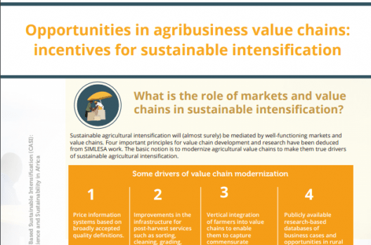 POLICY BRIEF:  Opportunities in agribusiness value chains: incentives for sustainable intensification