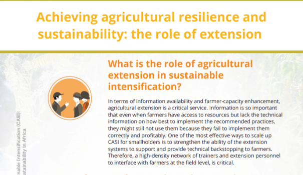 POLICY BRIEF: Achieving agricultural resilience and sustainability: the role of extension