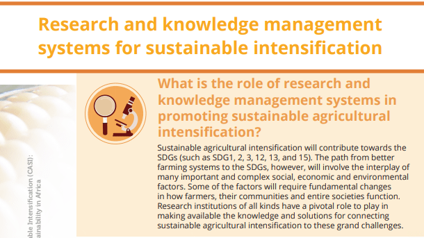 POLICY BRIEF:  Research and knowledge management systems for sustainable intensification