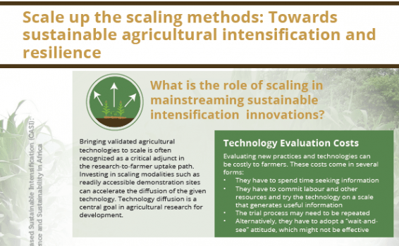 POLICY BRIEF:  Scale up the scaling methods: Towards sustainable agricultural intensification and resilience