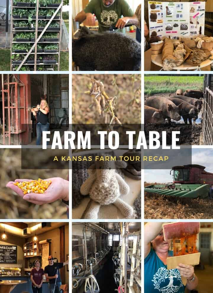 A collage of images from Kansas Farm Tour