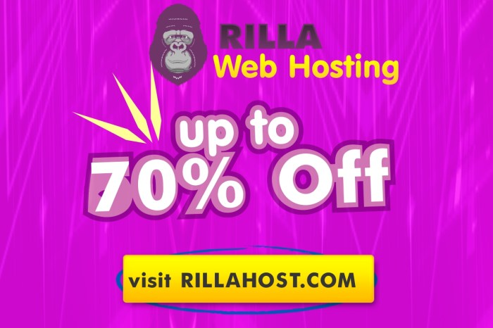Up to 70% Off Web Hosting: Rill Web Hosting Promo Codes & Discount Coupon [Exclusive]