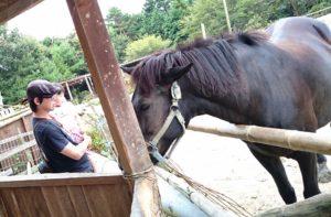 馬におやつをあげました