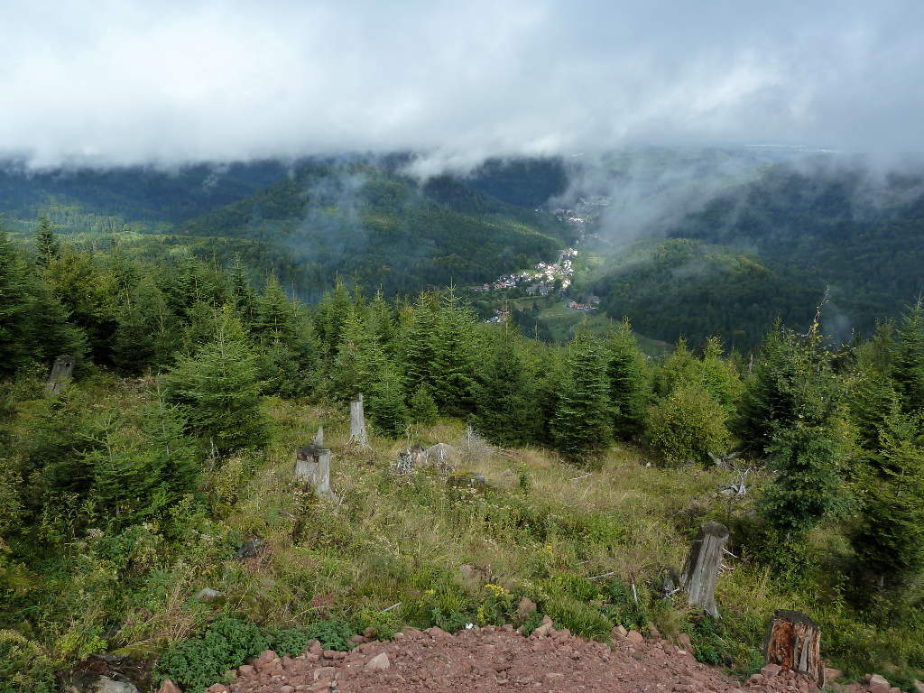 westweg-panorama-zwischen-dobel-forbach