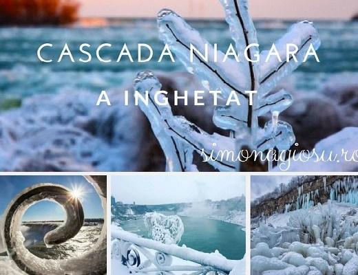 cascada Niagara a inghetat
