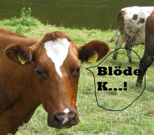 Die Kuh macht's richtig! Das mit den Auslassungspunkten ...