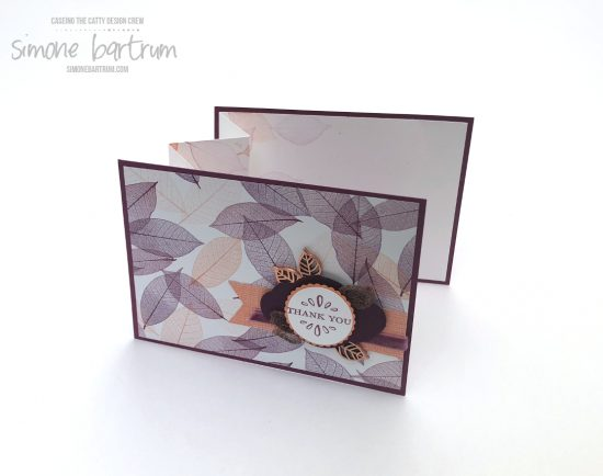 Instructions for this accordion insert fold at http://simonebartrum.com/cards/fancy-accordion-fold-insert/