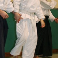 La Contraddizione e l'Incoerenza dell'Aikido