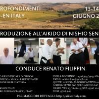 Approfondimenti Aiki-en Italy - Introduzione all'Aikido di Nishio Sensei