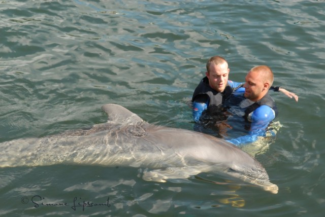 Injured diver from Great Britain doing a dolphin therapy session