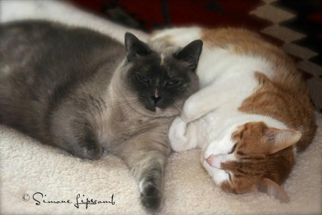 Stanley Kubrick and his sister Gracie Susie