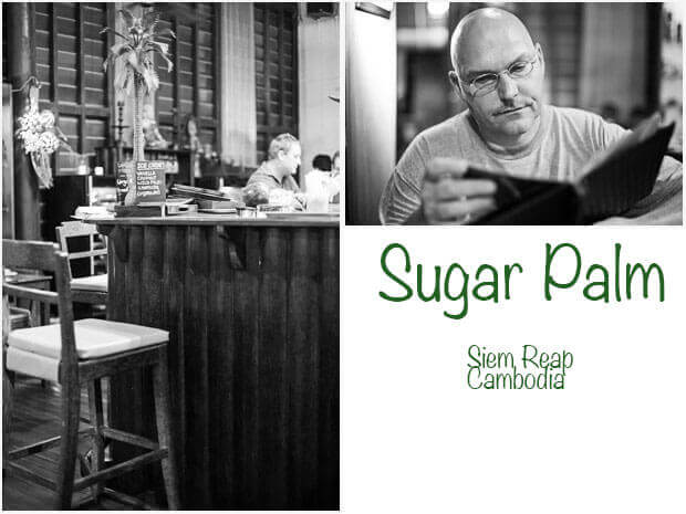 Sugarpalm3