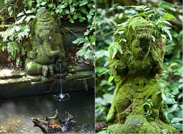 sacred-monkey-forest8