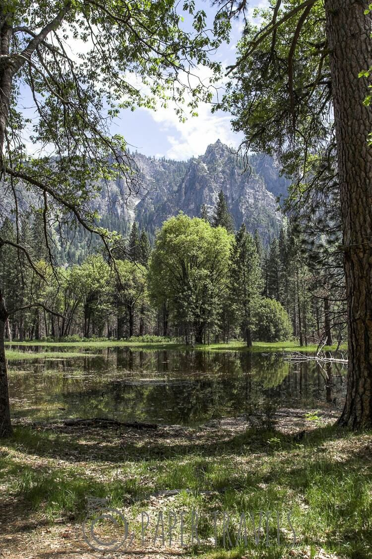 Tranquility in Yosemite valley
