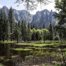 Yosemite National Park, USA | simoneskitchen.nl