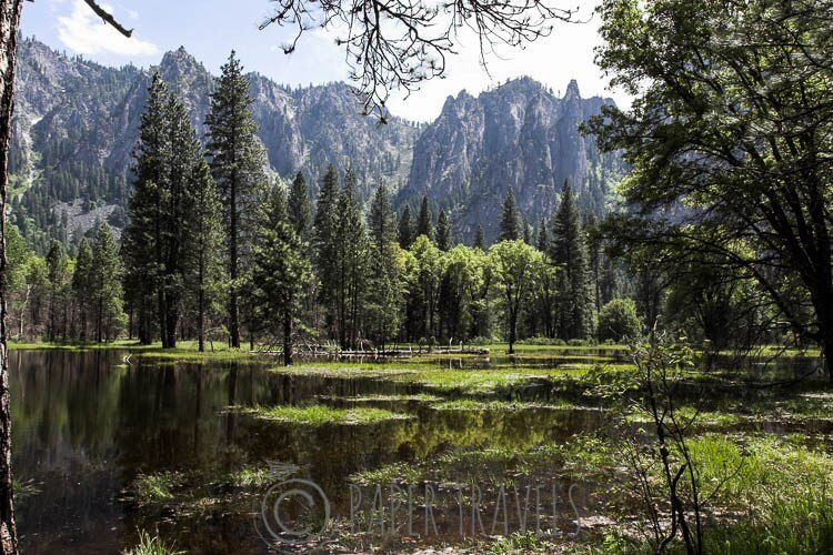 Yosemite National Park, USA   simoneskitchen.nl