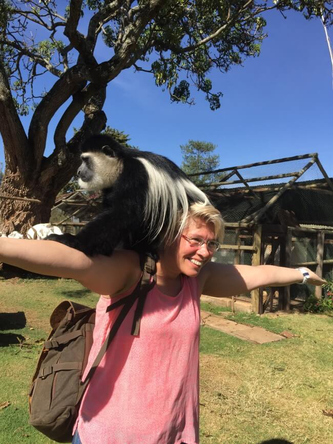 Met een (stinkende) colobus aap op mijn schouder