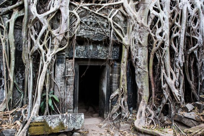 Angkor wat   simoneskitchen.nl