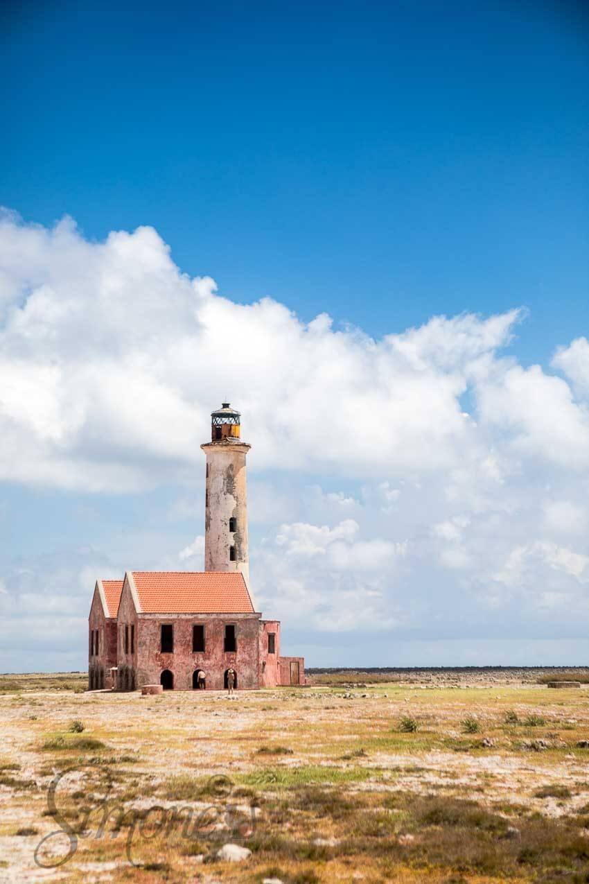 Klein Curacao | simoneskitchen.nl