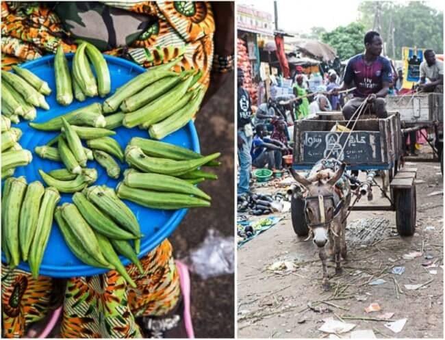 Senegal Mbour vismarkt