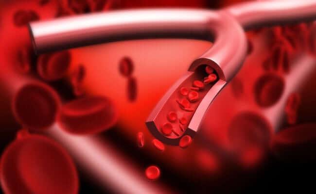 Bepaalt je bloedgroep hoe je het beste kunt eten??