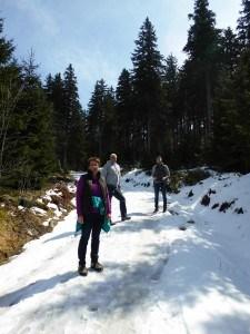 Schneereste auf dem Falkenstein im Bayerischen Wald