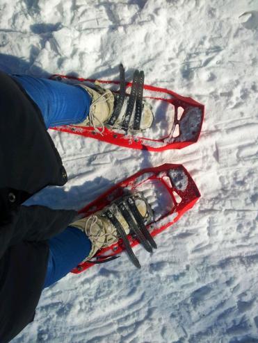 Schneeschuhe von Denk Bike+Outdoor, Passau
