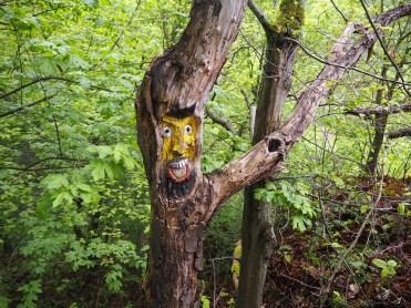 Waldgeister auf dem Ahrsteig