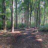 Kruis in het bos - Pieterpad