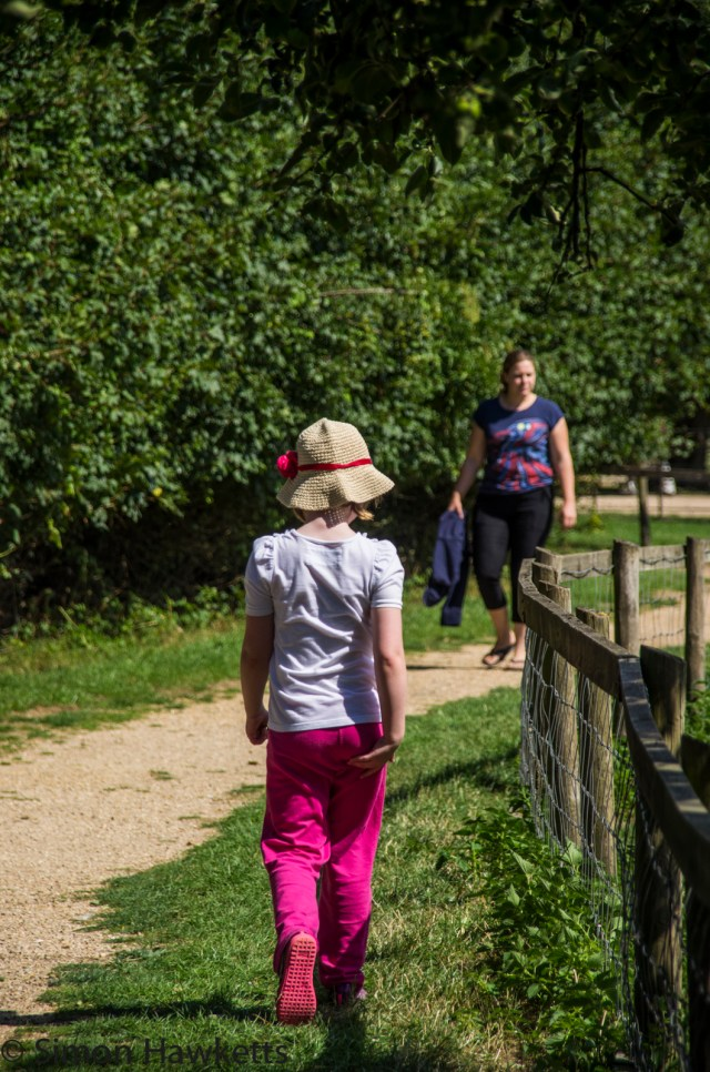 Wimpole Hall in Cambridgeshire pictures - Emma in front - as usual
