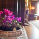 Sutton Hoo - A bowl of flowers