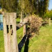 Foggy bottom gardens pictures - Old fence post