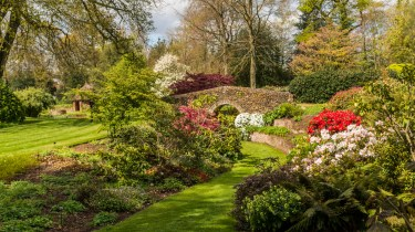 Pictures from Bressingham gardens in Norfolk - The gardens