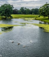Favourite pictures - The lake at Raby Castle 3