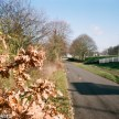 Nikon F80 sample photographs - Looking down the cycle path towards the town